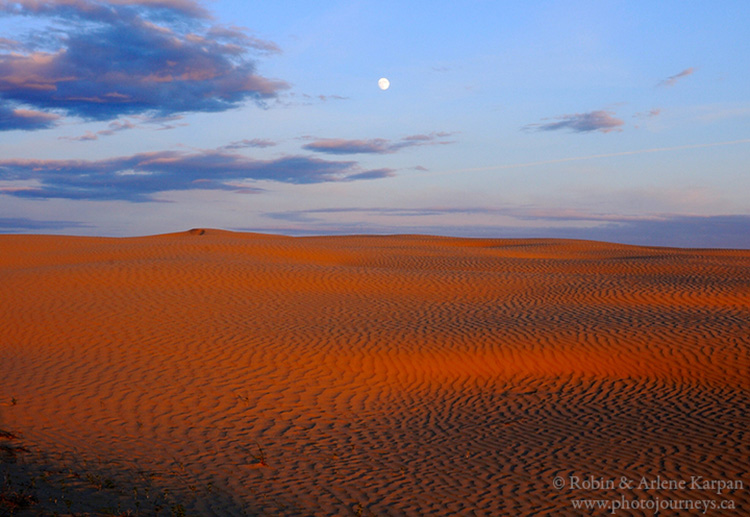Moon rise, Great Sand Hills, Saskatchewan