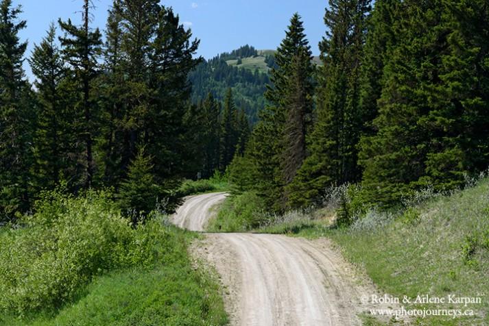 Battle Creek Road