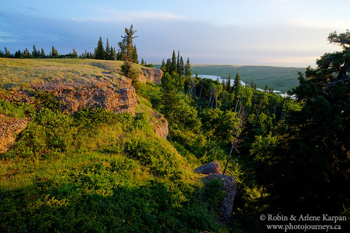 conglomerate cliffs, Cypress Hills Interprovincial Park