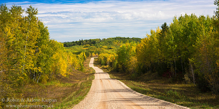 Porcupine Forest along Woody Lake Road., Saskatchewan