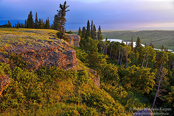 Conglomerate Cliffs, Cypress Hills, Saskatchewan