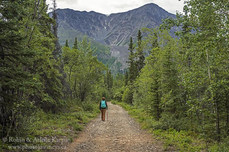 hiking trail, Kluane National Park, Yukon