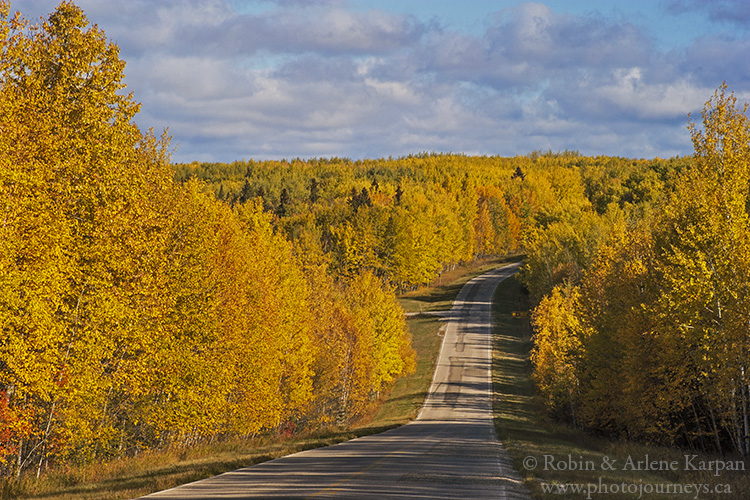 Hwy #263 near Sandy Lake, Prince Albert National Park Saskatchewan