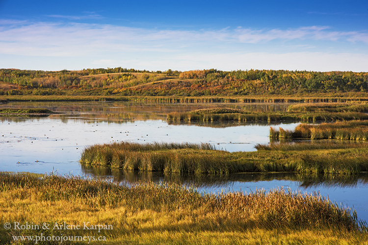Wetlands near Scent Grass Lake, Thickwood Hills, Saskatchewan