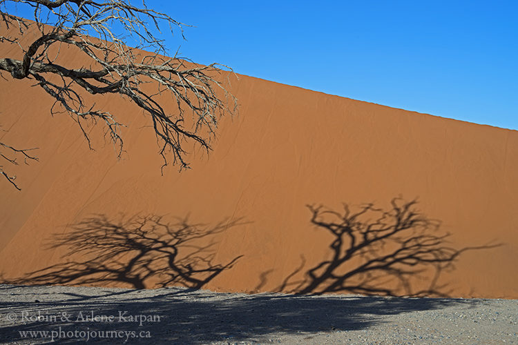 Dune 45, Namib-Naukluft National Park, Namibia www.photojourneys.ca