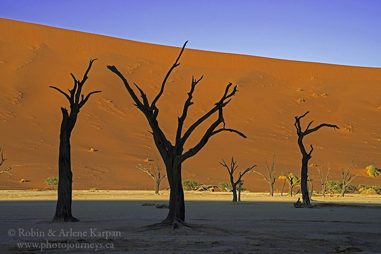 Deadvlei, Namib-Naukluft National Park, Namibia www.photojourneys.ca