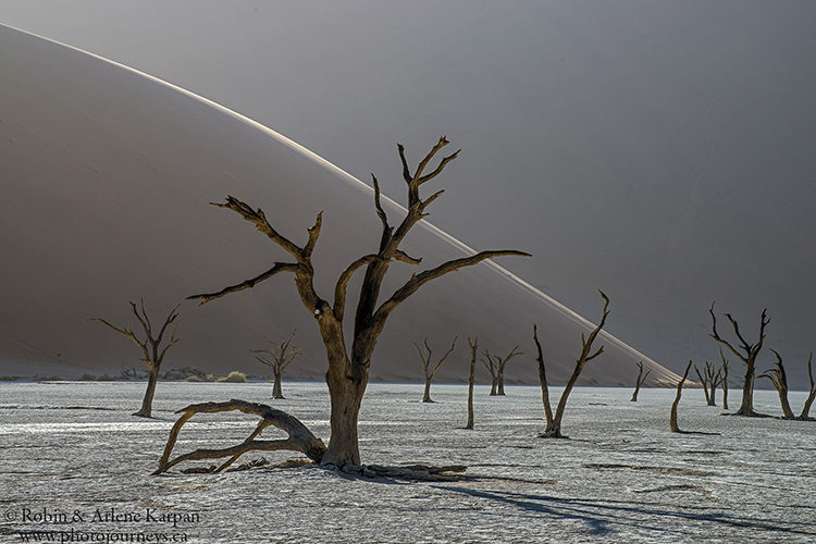 Dead vlei, Namib-Naukluft National Park, Namibia www.photojourneys.ca