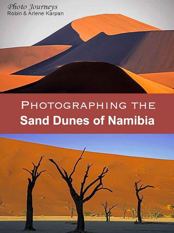 PIN for Photographing Sand Dunes of Namibia