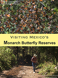 PIN for Blog posting on Photojourneys.ca on how to visit Mexico's Butterfly Reserves