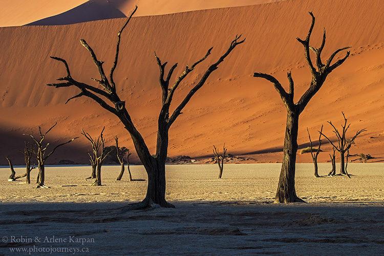 Dead Vlei, Namib-Naukluft National Park, Namibia
