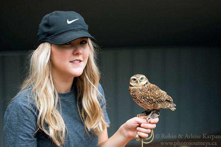 Alberta Birds of Prey Centre, Coaldale AB