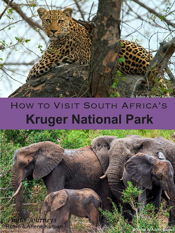 How to Visit Kruger National Park blog posting