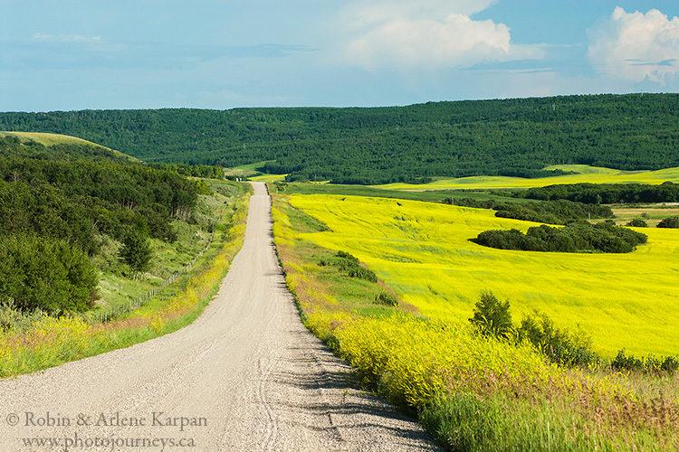 Road through Qu'Appelle Valley, Saskatchewan.