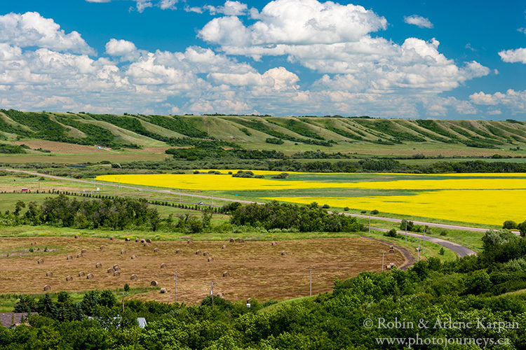 Canola and hay land in Qu'Appelle Valley, Saskatchewan