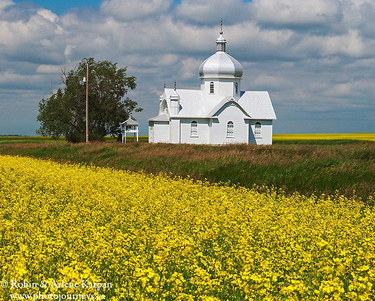 Canola field and St. John Church, Smuts, Saskatchewan