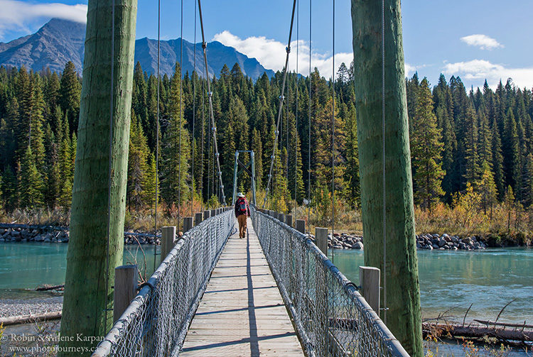 Suspension bridge on the Dog Lake Trail