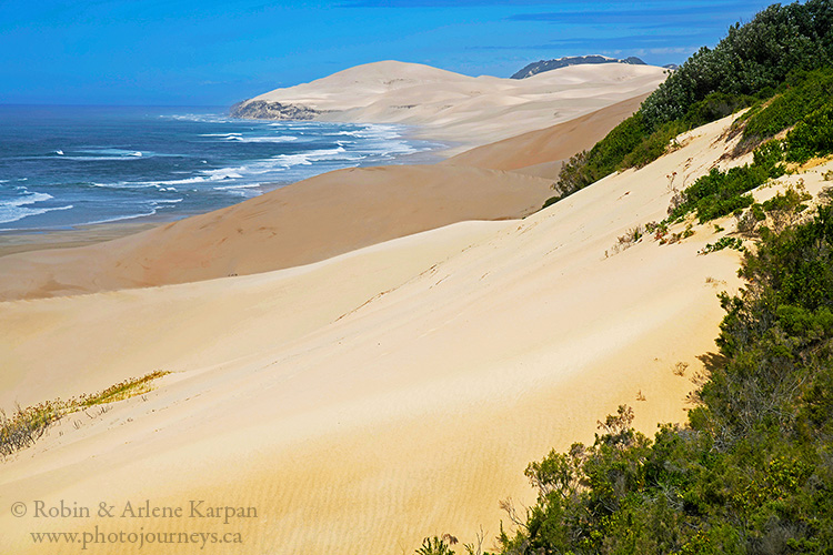 Woody Cape, South Africa