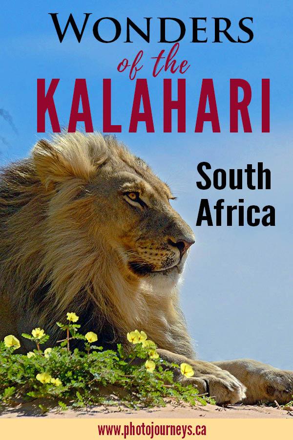 PIN for Wonders of the Kalahari
