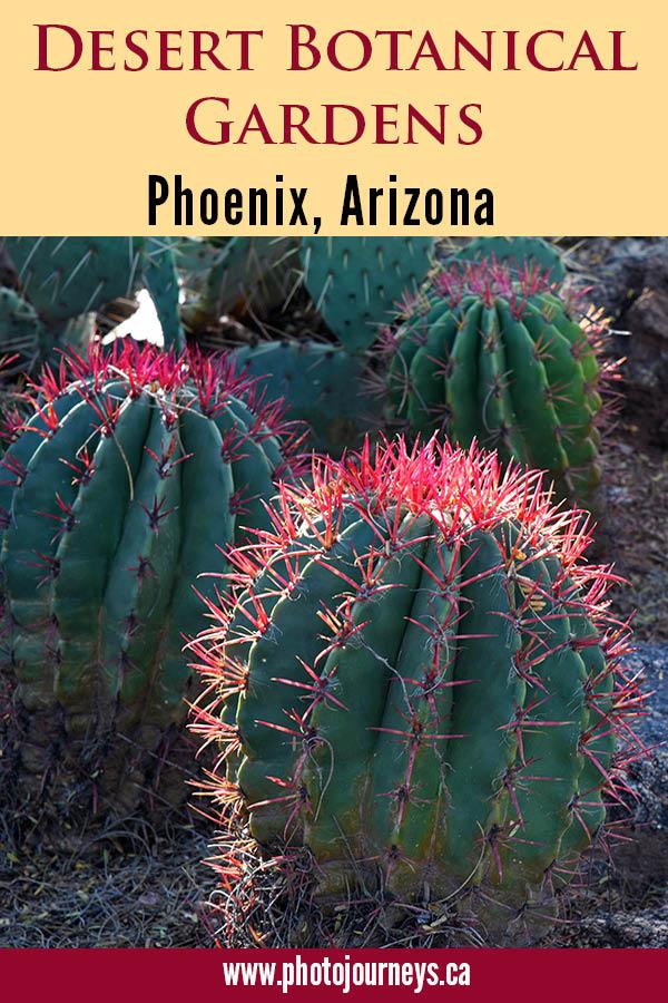 PIN for Desert Botanical Gardens