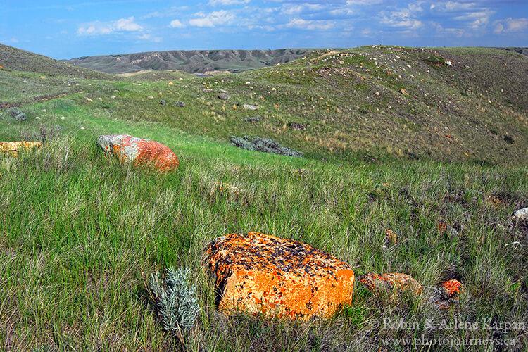 Saskatchewan Landing Provincial Park, Saskatchewan