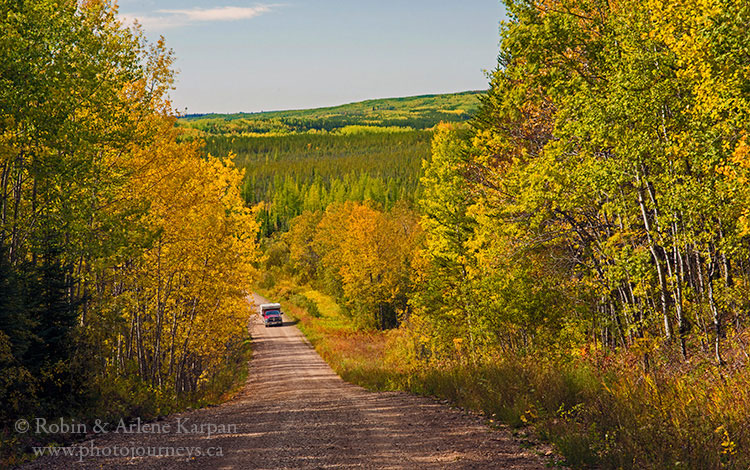 Porcupine Forest, fall colours, Saskatchewan.