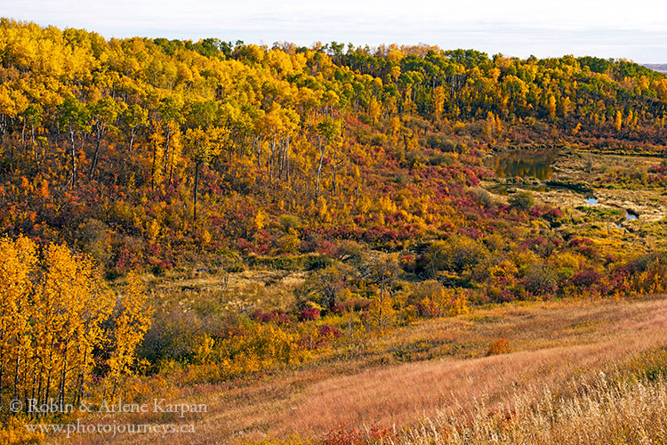 Thickwood Hills near Mayfair, Saskatchewan