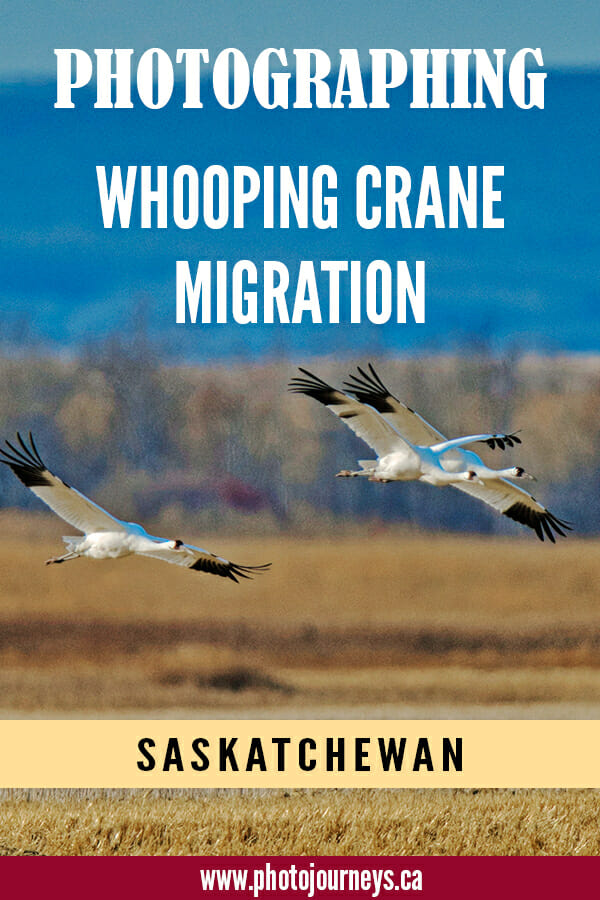 PIN for Whooping Crane migration