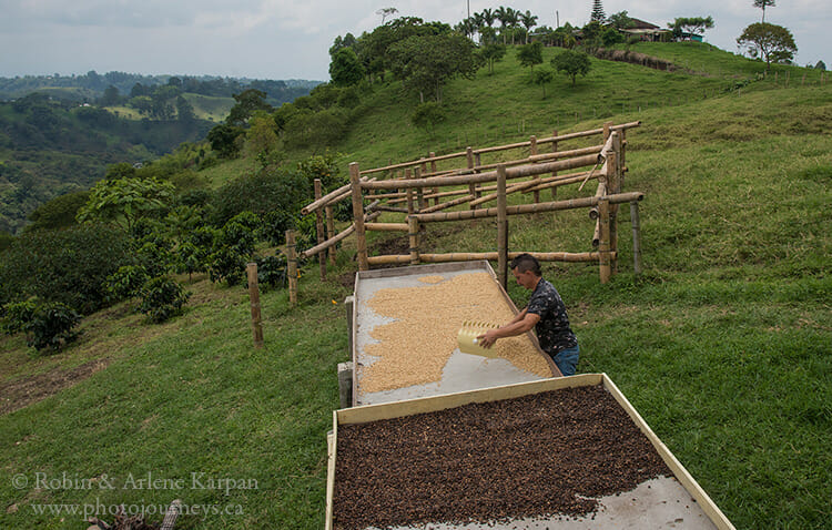 Coffee drying trays, Colombia