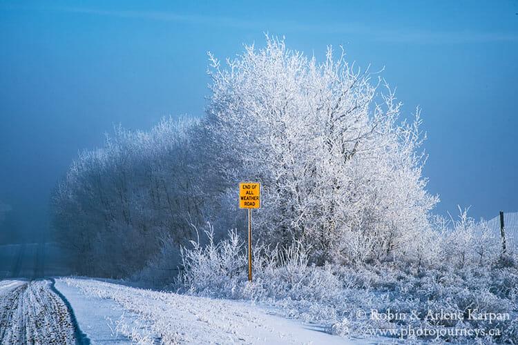 Hoarfrost, Saskatchewan, winter photography