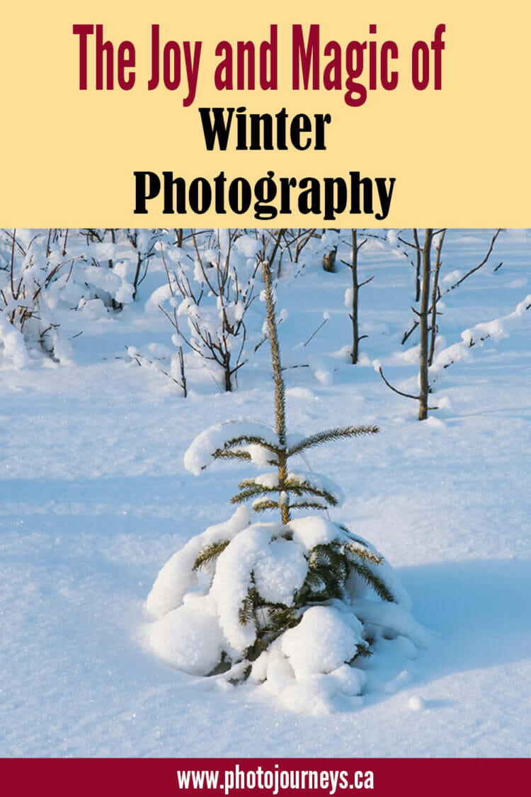 PIN for Winter Photography