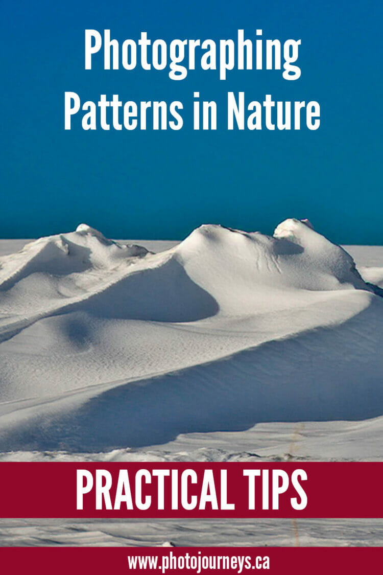 PIN for Patterns in Nature