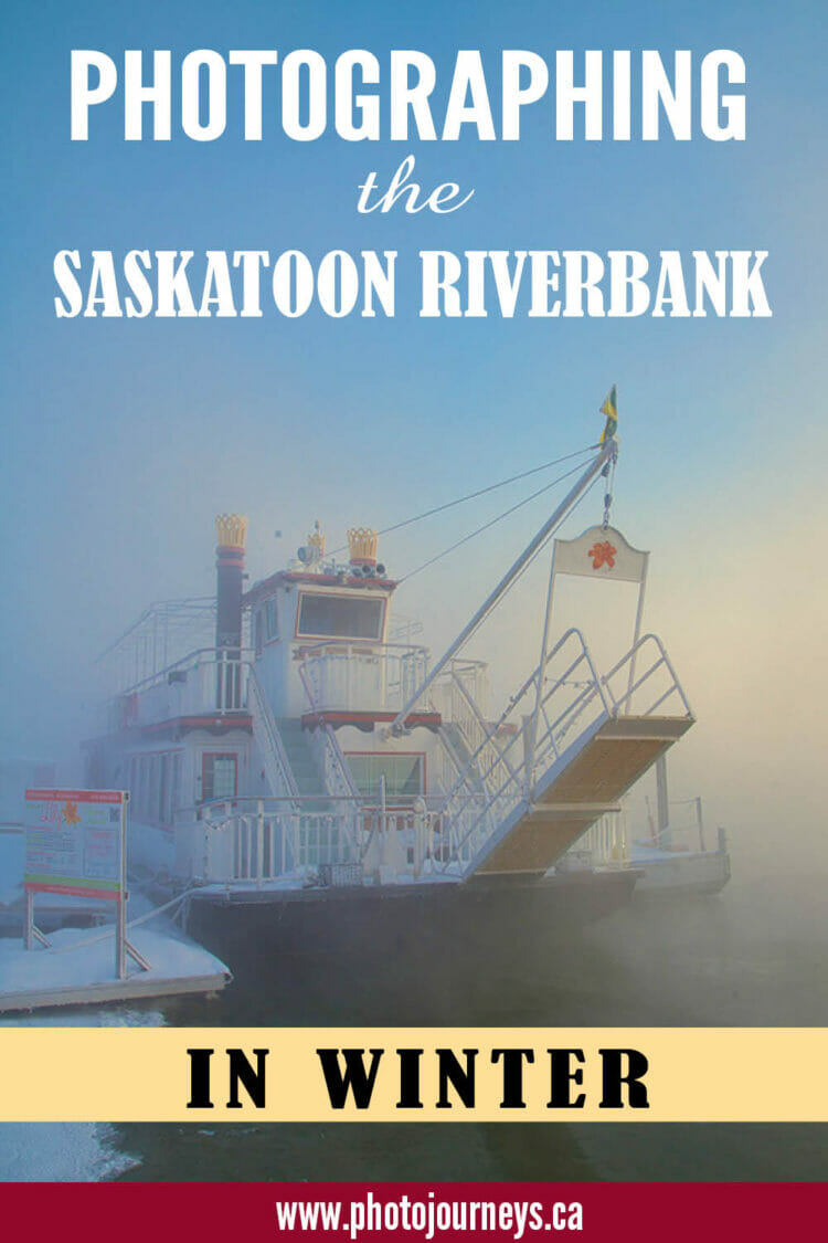 PIN for Photographing Saskatoon Riverbank in Winter