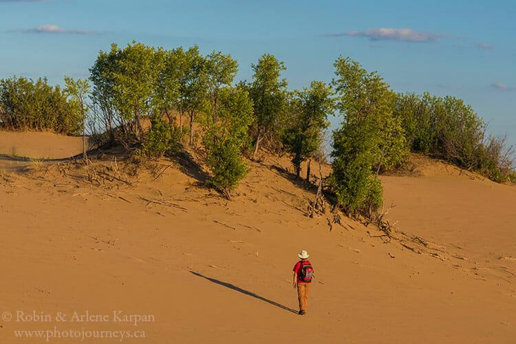 Sand dunes, Douglas Provincial Park, Saskatchewan