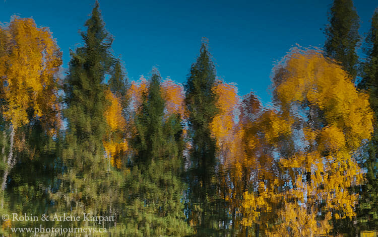 Fall colours, Prince Albert National Park
