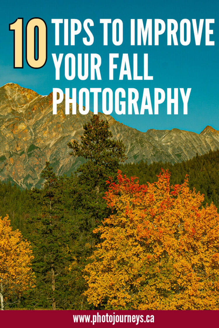 PIN for improving fall photography