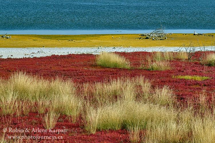 Saline Lake, Blaine Lake, Saskatchewan