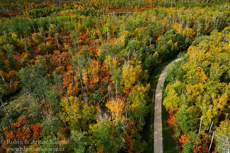 Fall colours, Duck Mountain, Saskatchewan
