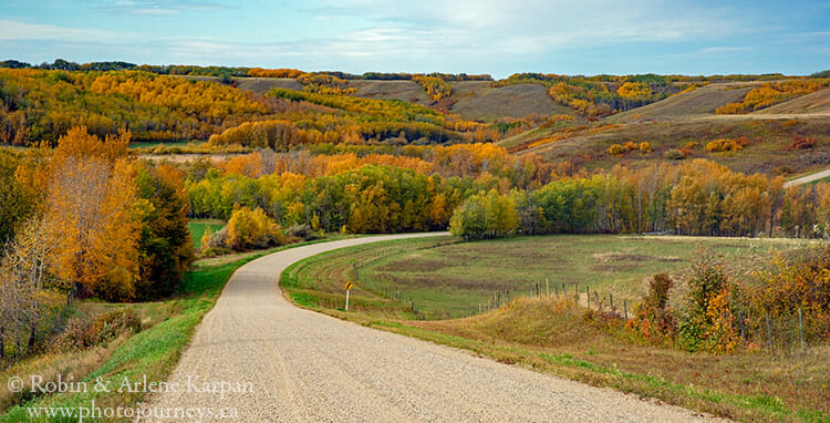 Fall colours near Battleford, Saskatchewan