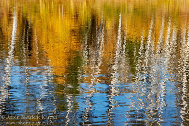 Fall colours, Saskatchewan