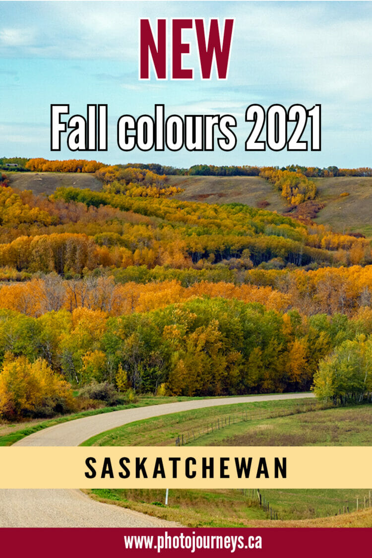 Fall colours 2021